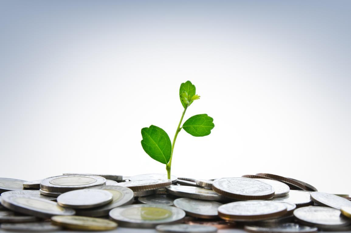 stock-photo-green-plant-growing-from-coins-83192818